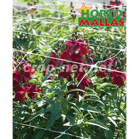 flowers using hortizontal support net